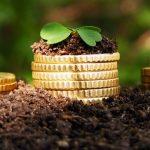 Купівля землі з метою інвестування